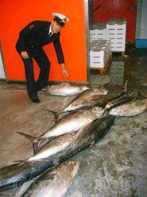 Alassio - capitaneria sequestro tonno