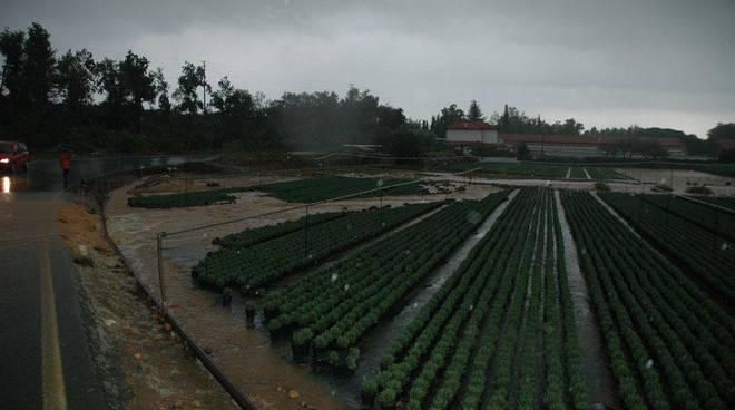 Albenga -  alluvione 23 ottobre pratogrande