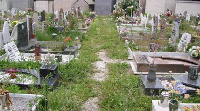 Savona - cimitero Zinola