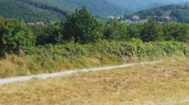 Ferrania, centrale a biomasse