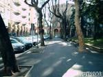 Deforestazione urbana a Savona