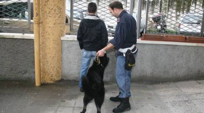 Polizia cani antidroga - cinofila