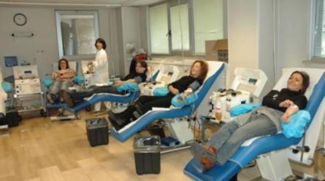 Donazione di sangue - Avis