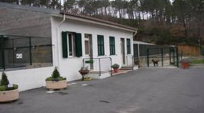 Canile di Albenga, Enesi