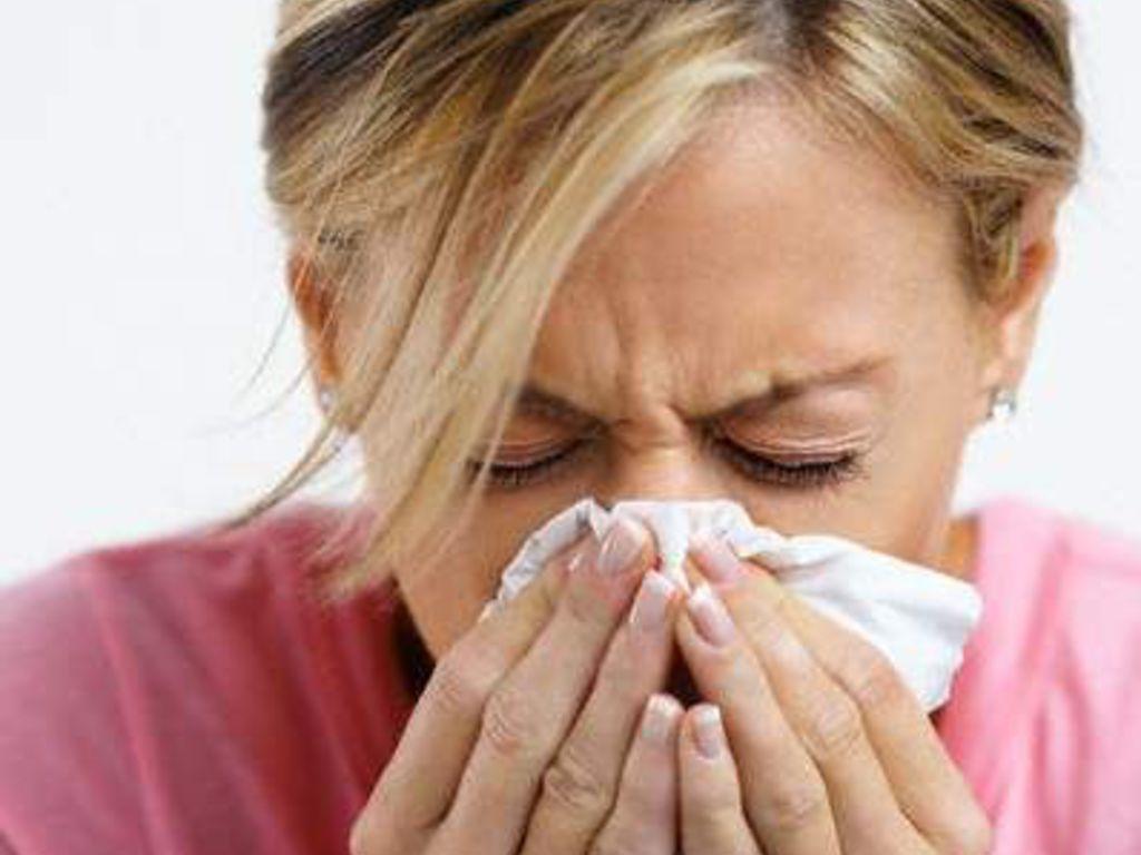 """Allergia Rimedi Della Nonna malanni di stagione, la """"via ligure"""" dei rimedi naturali"""