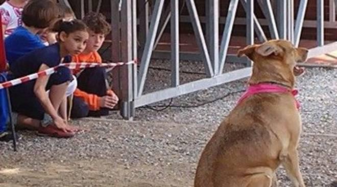 Cani e bambini: iniziativa nel rifugio per animali di Leca d'Albenga