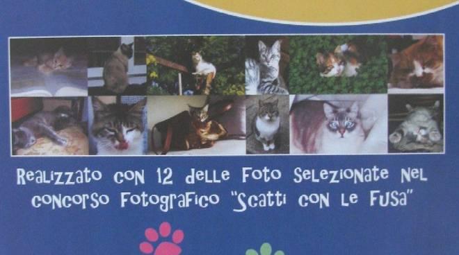calendario gattile Enpa 2010