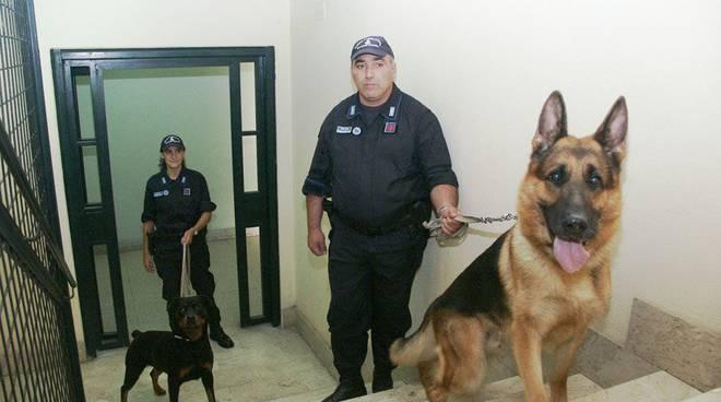 Polizia penitenziaria cinofile