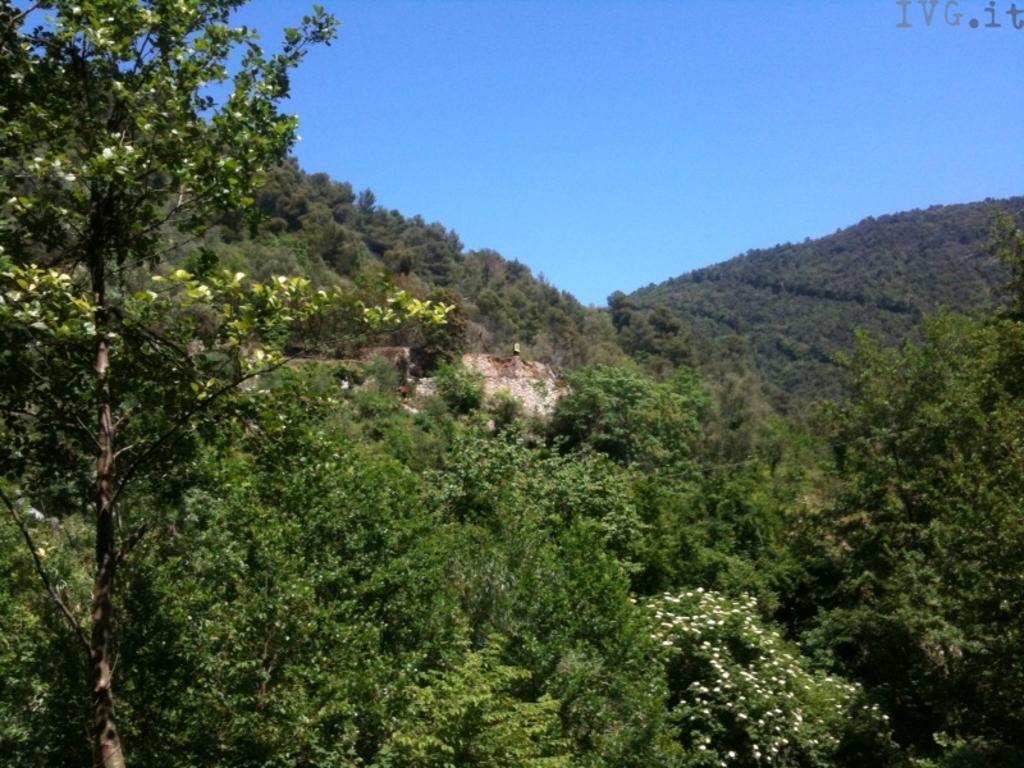 Finale Ligure - zona boschiva Calvisio