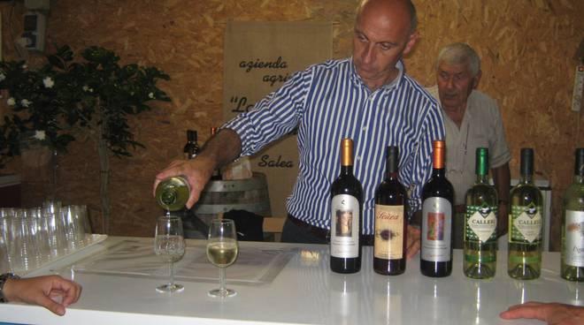 Sagra Salea vino