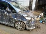 danni auto