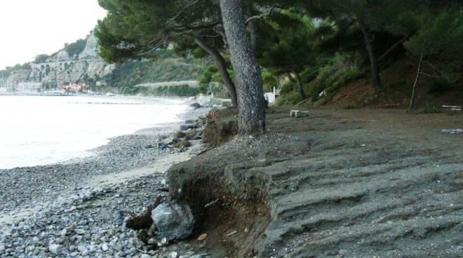 pini Punta Murena