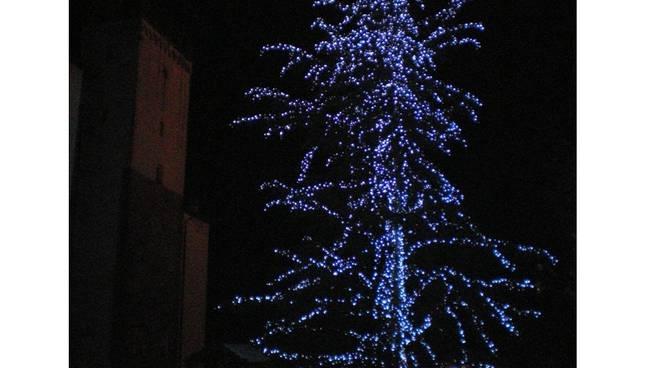 albero di Natale - Millesimo
