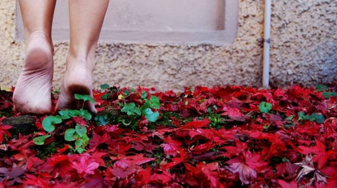foto concorso ceriale autunno