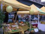 mercato calata vignoso