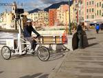 triciclo google