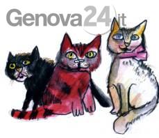 gatti luzzati