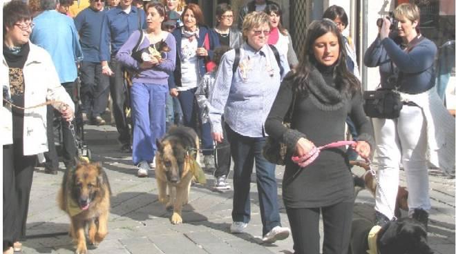 passeggiata canina