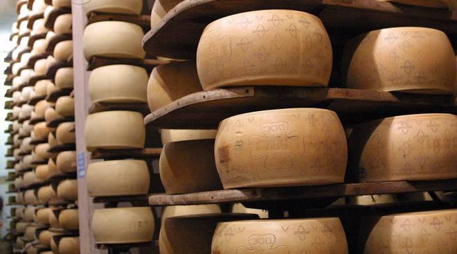 formaggio grana