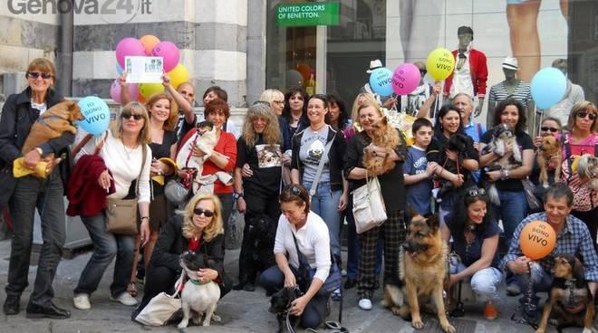 protesta contro canili spagnoli
