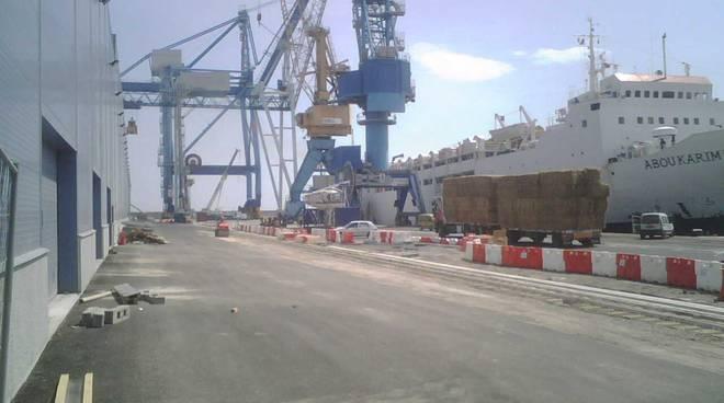 Reefer Terminal Vado