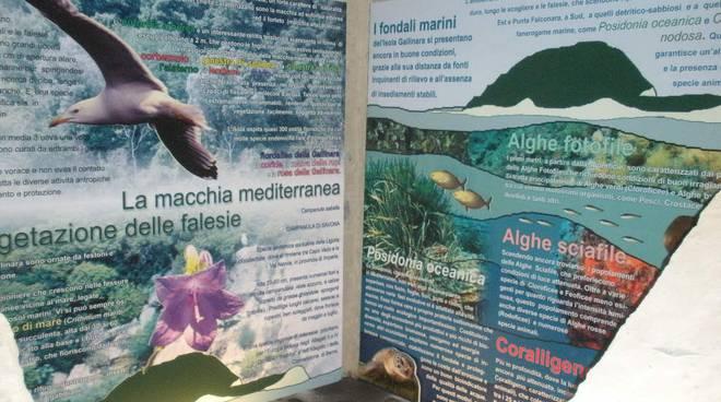 Centro Multimediale sulla Riserva Naturale Regionale della Gallinara