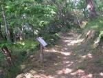 sentiero_botanico
