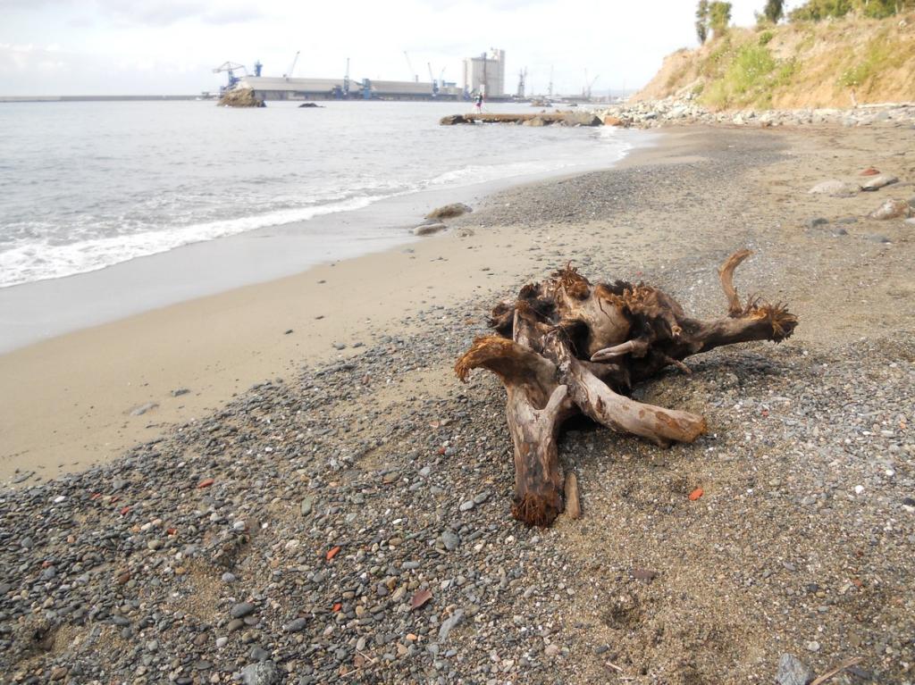 Spiaggia libera di Albissola