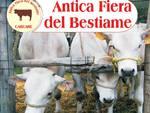 fiera del bestiame carcare