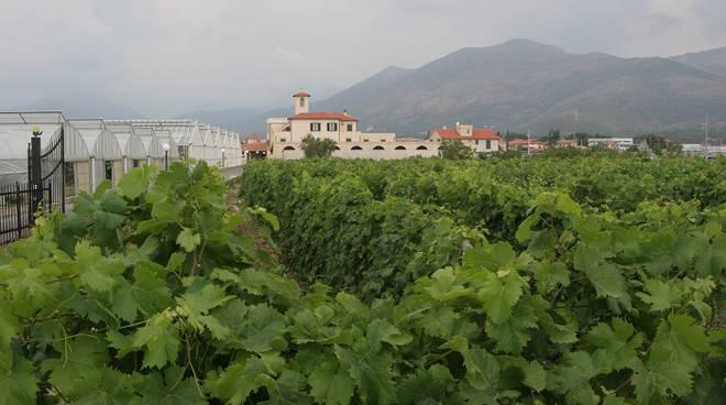 sede operativa di Albenga dell'Azienda Speciale della Camera di Commercio di Savona