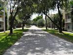 Albenga_street