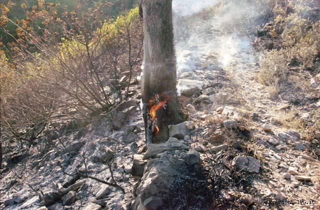 incendio monte piccaro