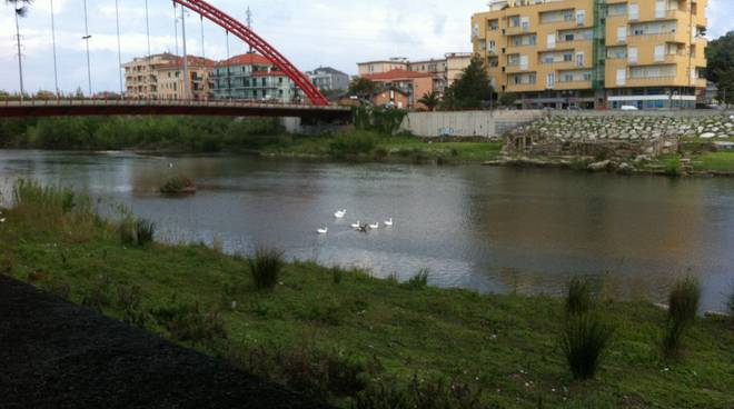 albenga fiume centa