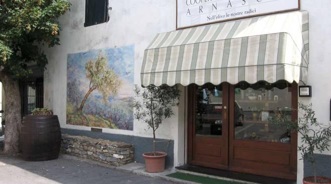 Cooperativa olivicola Arnasco