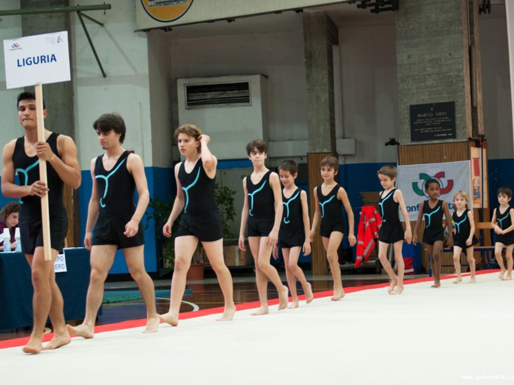 ginnastica Confsport
