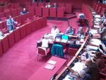 rixi consiglio comunale