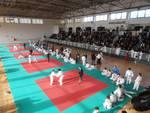 judo Sicco