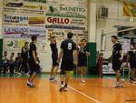 Avis Volley Team Finale