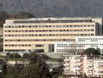 istituto italiano ricerca