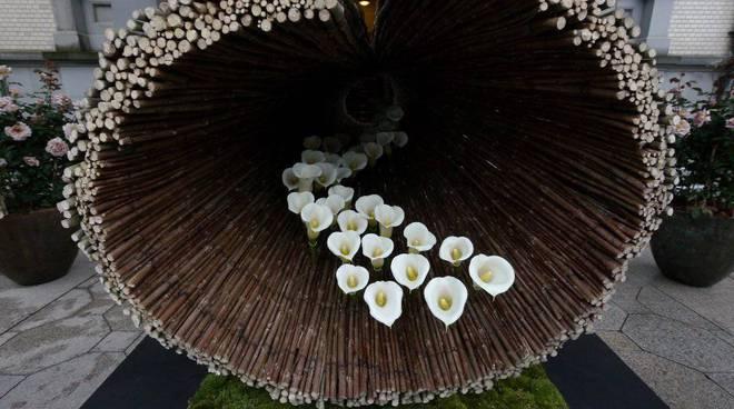 floricola borghetto