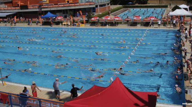 Nuoto trofeo citt di rapallo coppa head tutti i for Piscina quinto genova