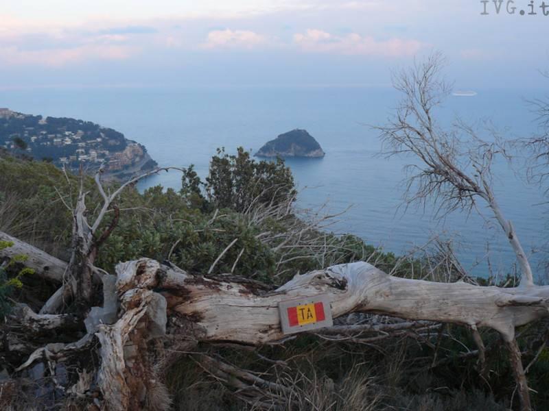 panorama bergeggi