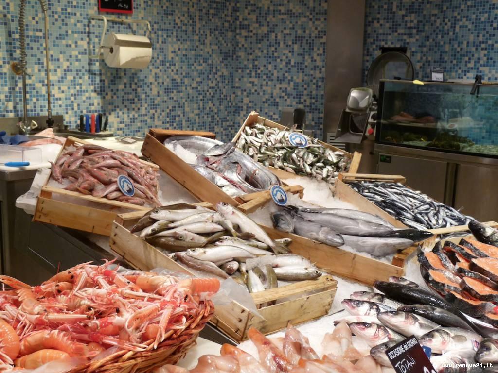 pescato mar ligure