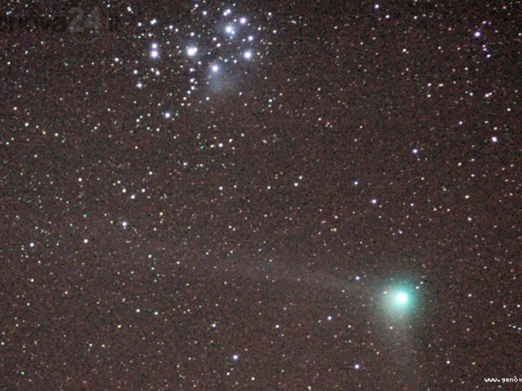 stelle, osservatorio righi