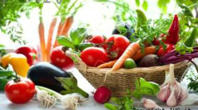 orto verdure