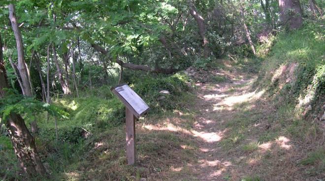 bergeggi sentiero botanico