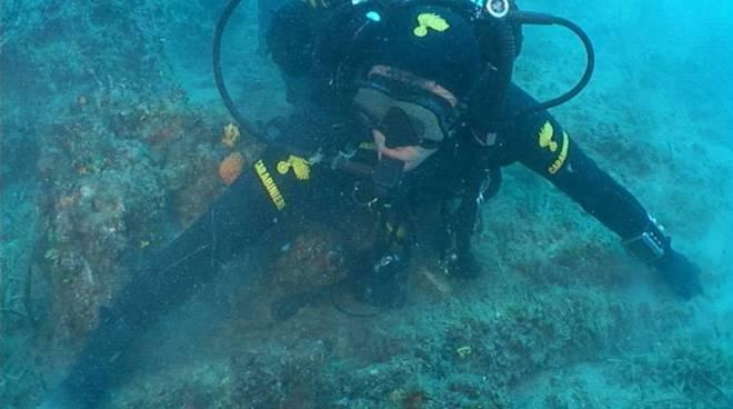 Nemo: nuove immersioni