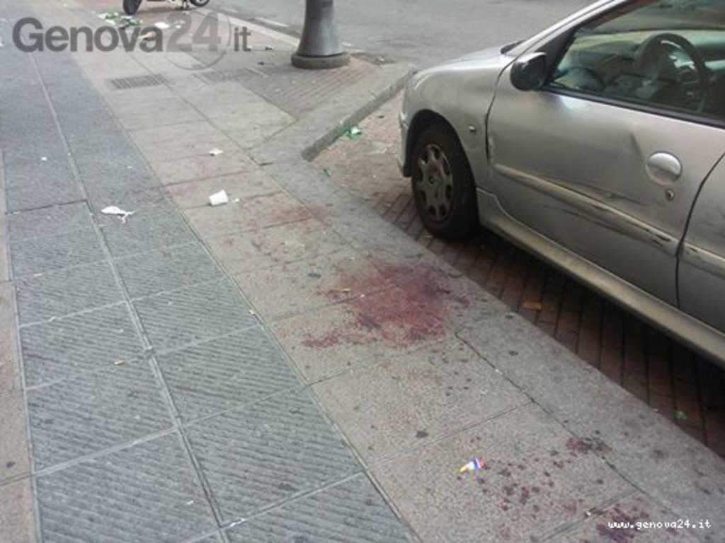 sangue via canevari