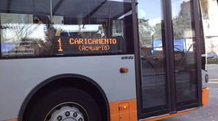 autobus bus amt 1