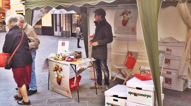 banchetto per la raccolta fondi a favore dell'Associazione Italiana Sclerosi Multipla